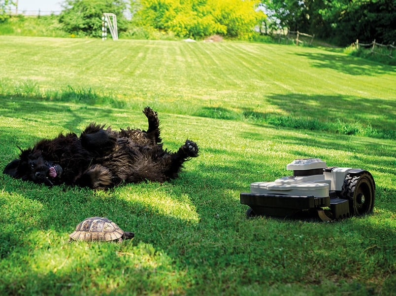 Kids and pets are safe with robot mowers